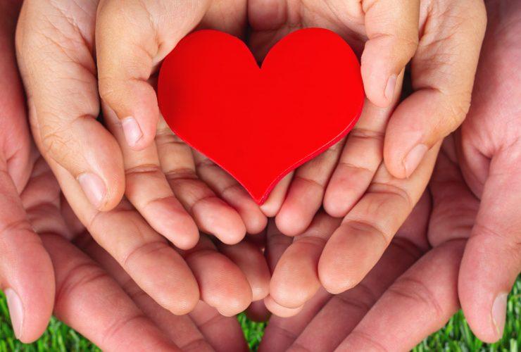 red heart shape in family member's hand holding